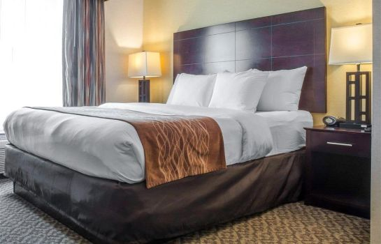 Suite Comfort Suites Cicero - Syracuse North