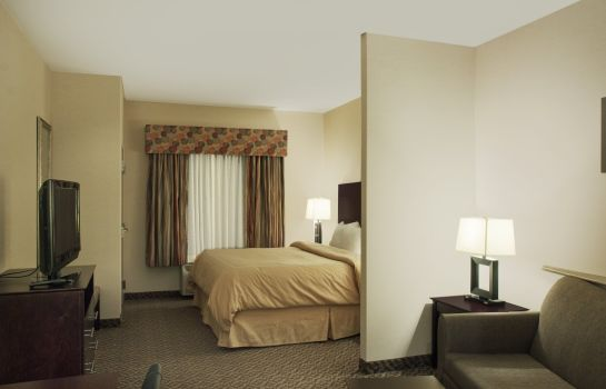 Zimmer Comfort Suites Cicero - Syracuse North