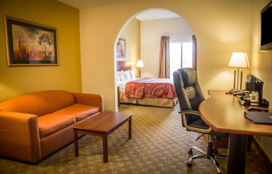 Kamers Holiday Inn Express & Suites CLEAR SPRING