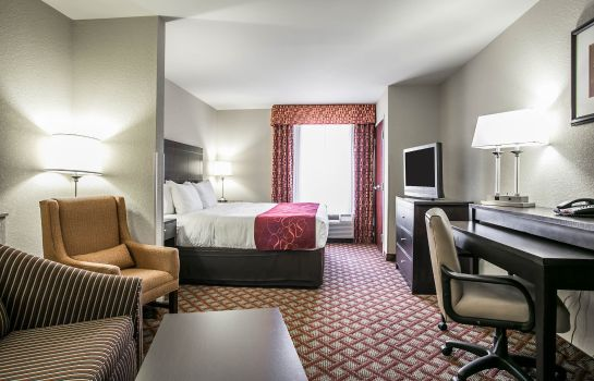 Suite Comfort Suites Columbia Northeast - Fort