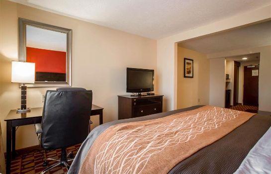 Suite Comfort Inn and Suites Gordon HWY