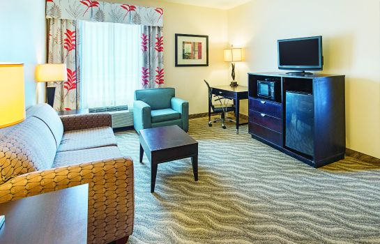 Suite La Quinta Inn and Suites Glen Rose