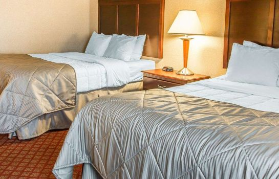 Suite Clarion Inn & Suites Airport
