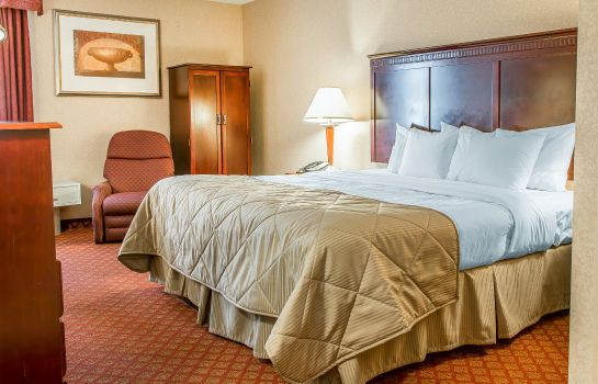 Room Clarion Inn and Suites Airport Clarion Inn and Suites Airport