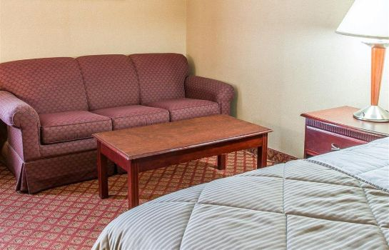 Zimmer Clarion Inn and Suites Airport