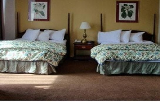 Chambre SPRINGS HOTEL AND SPA