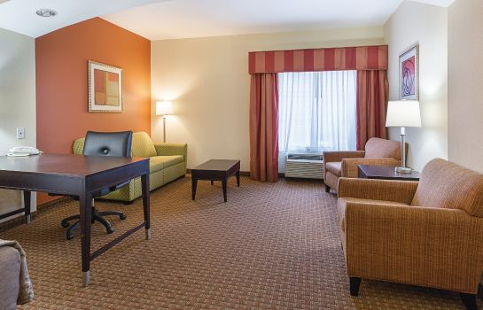 Zimmer La Quinta Inn Ste Houston  E Normandy