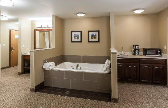 Suite Comfort Inn and Suites Near University o
