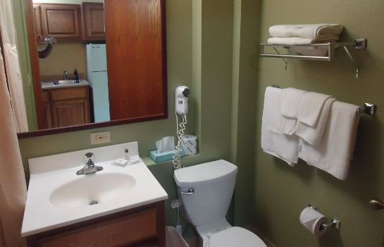 Bagno in camera Town House Extended Stay Hotel Downtown
