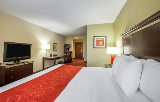 Room Comfort Suites Locust Grove