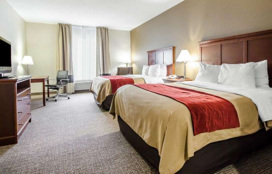 Room Comfort Inn Louisville