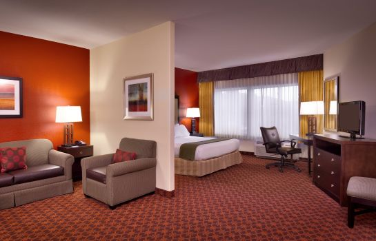 Suite Holiday Inn Express & Suites MESQUITE