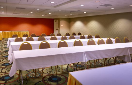 Sala congressi Holiday Inn Express & Suites MESQUITE