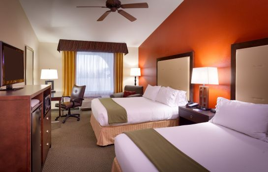 Zimmer Holiday Inn Express & Suites MESQUITE
