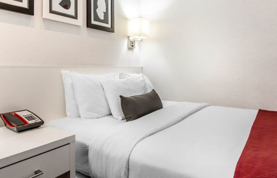 Kamers an Ascend Hotel Collection Member GEM Hotel - Chelsea