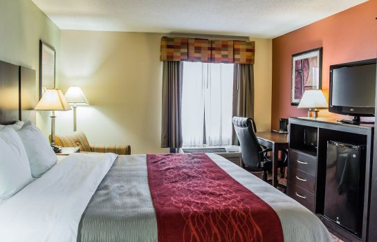 Suite Comfort Inn Raleigh