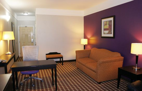 Zimmer La Quinta Inn and Suites Raymondville