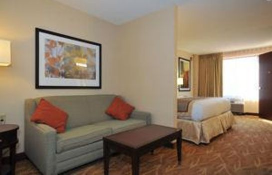 Suite THE KAHLER INN & SUITES