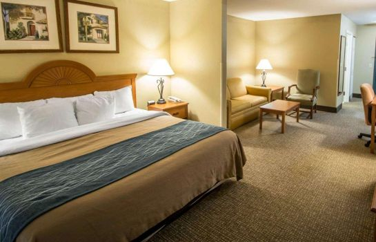 Suite Comfort Inn & Suites I-95 - Outlet Mall
