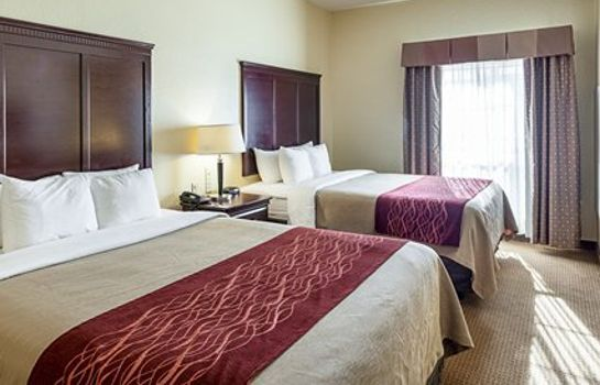 Suite Comfort Inn Near SeaWorld