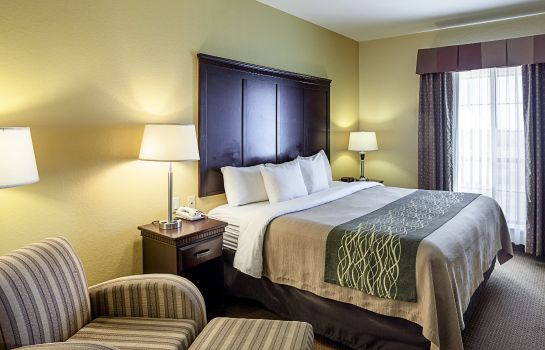 Chambre Comfort Inn near Seaworld - Lackland AFB