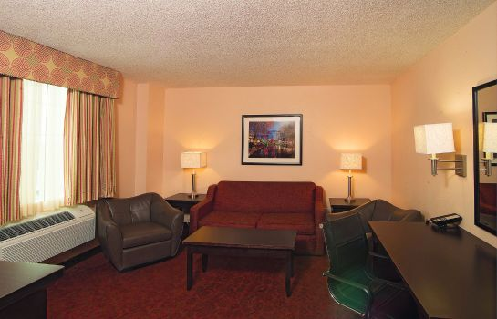Suite La Quinta Inn and Suites San Antonio Medical Center
