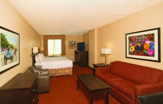 Zimmer La Quinta Inn and Suites San Antonio Medical Center