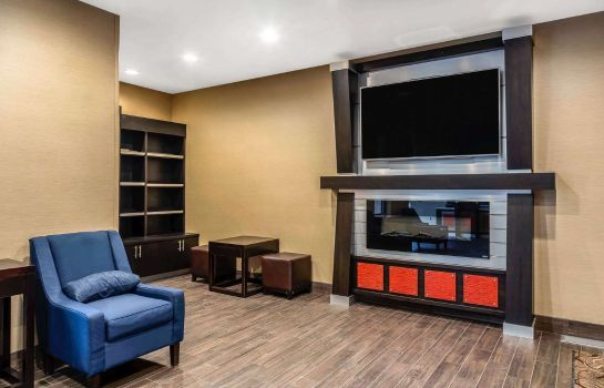 Hol hotelowy Comfort Suites San Jose Airport