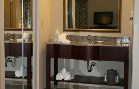 Suite Hampton Inn and Suites Savannah-Airport