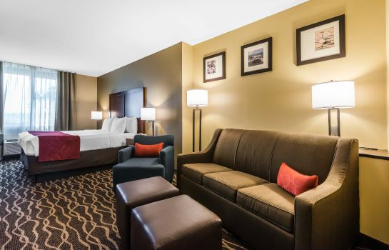 Suite Comfort Suites Tampa Airport North