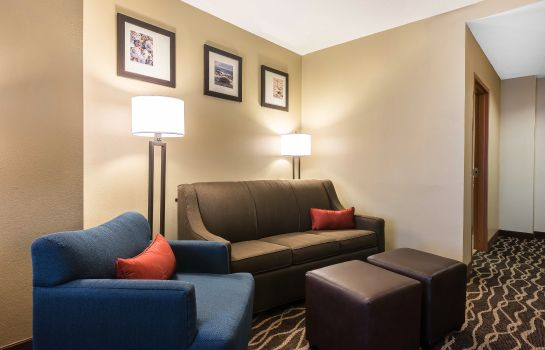 Zimmer Comfort Suites Tampa Airport North
