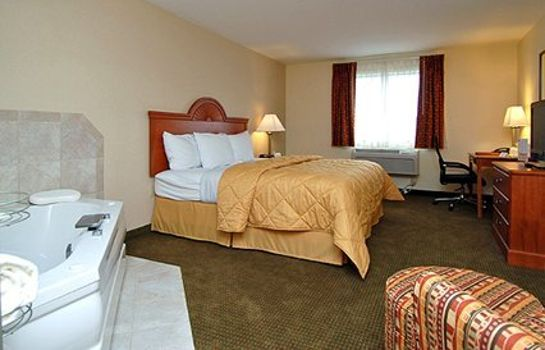 Suite Comfort Inn Williamsport