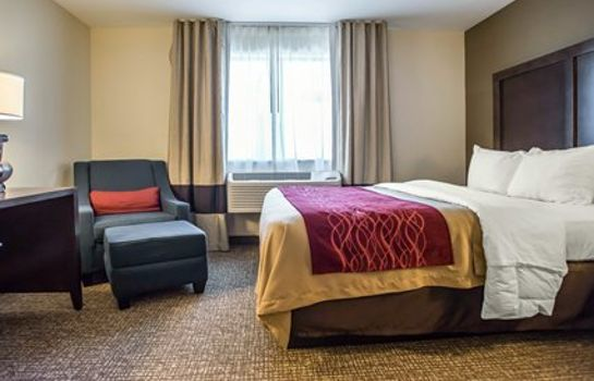 Zimmer Comfort Inn Williamsport