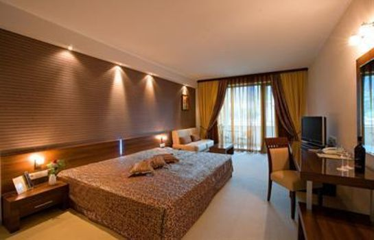 Double room (standard) SPA Hotel Persenk