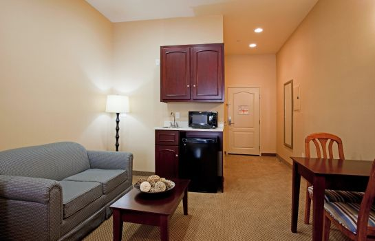 Suite Holiday Inn Express & Suites LOS ANGELES AIRPORT HAWTHORNE