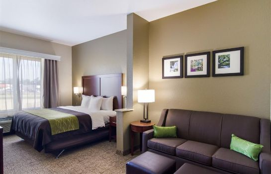 Suite Comfort Inn Blackshear Hwy 84