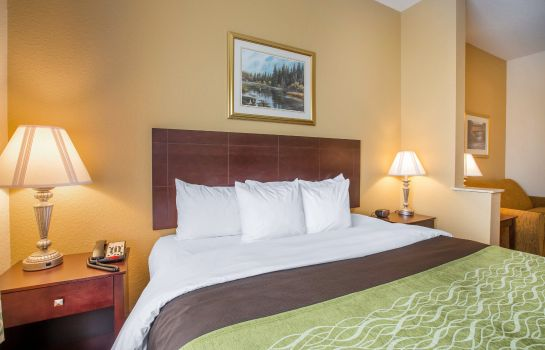 Room Comfort Inn Blackshear
