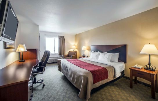 Kamers Comfort Inn & Suites Greenville