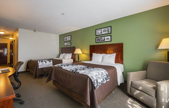 Room Sleep Inn & Suites Manchester