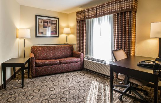 Suite Comfort Suites At WestGate Mall