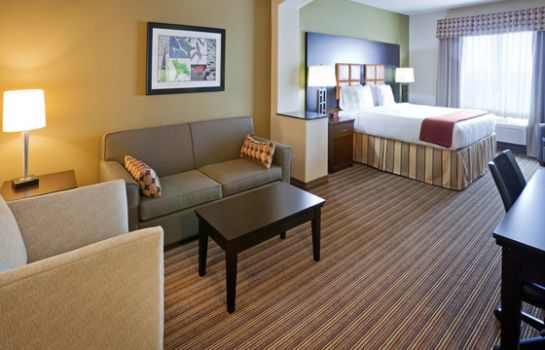 Suite Holiday Inn Express & Suites DALLAS W - I-30 COCKRELL HILL