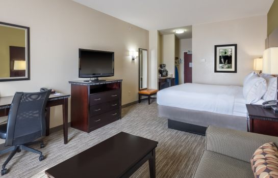 Room Holiday Inn Express & Suites DALLAS W - I-30 COCKRELL HILL