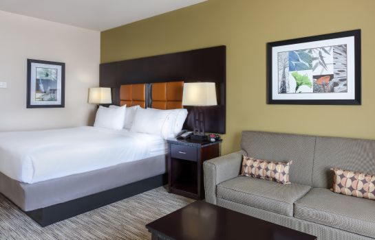 Zimmer Holiday Inn Express & Suites DALLAS W - I-30 COCKRELL HILL