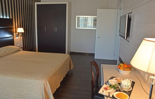 Double room (standard) SHotel