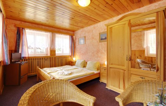 Double room (standard) Hotel Martin a Kristyna