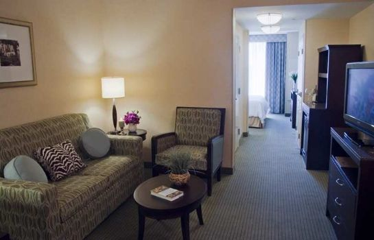 Suite Hilton Garden Inn Dulles North