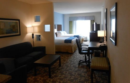 Suite Holiday Inn Express & Suites ATLANTA ARPT WEST - CAMP CREEK