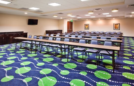 Tagungsraum Holiday Inn Express & Suites ATLANTA ARPT WEST - CAMP CREEK