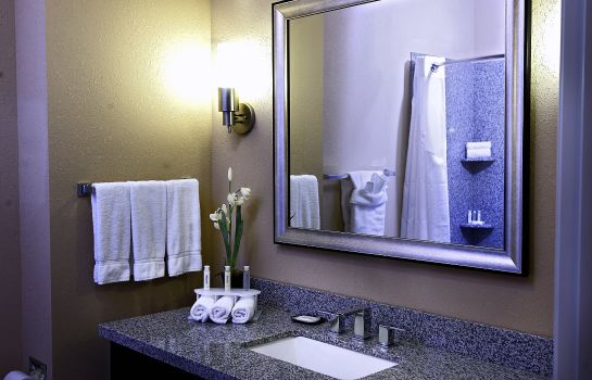 Information Holiday Inn Express & Suites ATLANTA ARPT WEST - CAMP CREEK