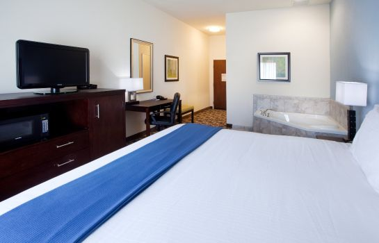 Zimmer Holiday Inn Express & Suites ATLANTA ARPT WEST - CAMP CREEK